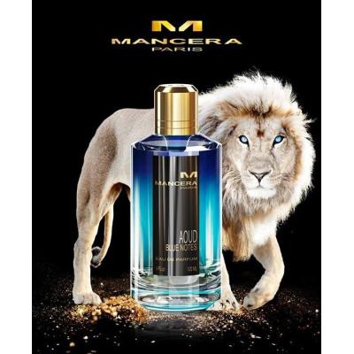 Mancera Aoud Blue Notes EDP 120ml pentru Bărbați și Femei Parfumuri unisex