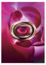 Cartier Baiser Fou EDP 75ml for Women Women's Fragrance