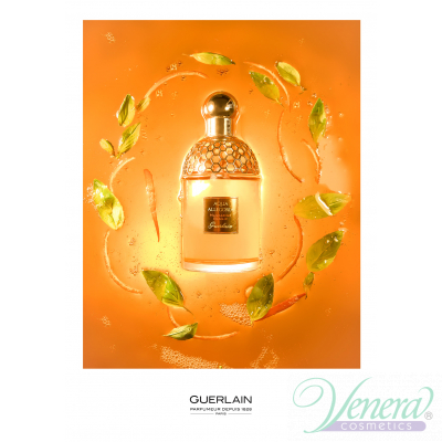Guerlain Aqua Allegoria Mandarine Basilic EDT 125ml pentru Femei produs fără ambalaj Produse fără ambalaj