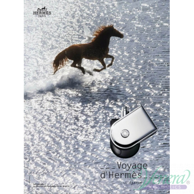 Hermes Voyage D'Hermes Pure Parfum 100ml for Men and Women Without Package Products without package