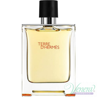 Hermes Terre D'Hermes EDT 100ml for Men Without Package  Products without package